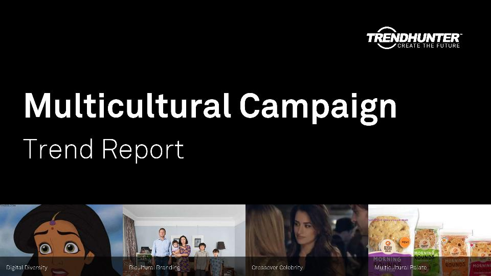 Multicultural Campaign Trend Report Research