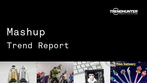 Mashup Trend Report and Mashup Market Research