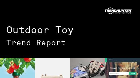 Outdoor Toy Trend Report and Outdoor Toy Market Research
