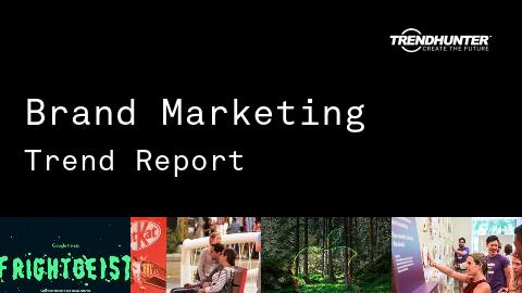 Brand Marketing Trend Report and Brand Marketing Market Research
