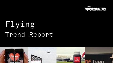 Flying Trend Report and Flying Market Research
