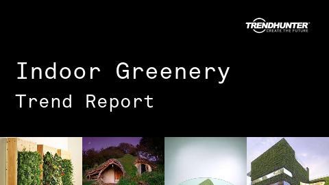 Indoor Greenery Trend Report and Indoor Greenery Market Research