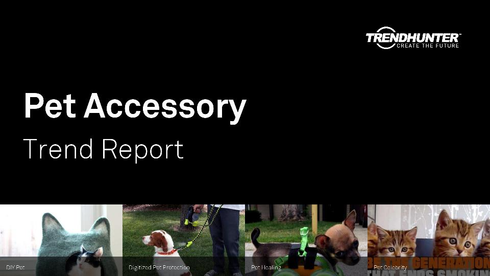 Pet Accessory Trend Report Research