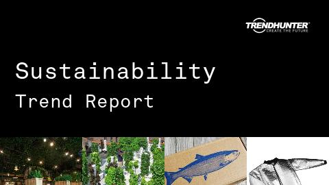Sustainability Trend Report and Sustainability Market Research