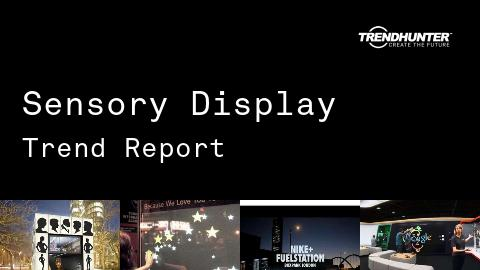 Sensory Display Trend Report and Sensory Display Market Research