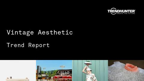 Vintage Aesthetic Trend Report and Vintage Aesthetic Market Research