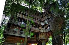 Treetop Mansions