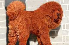Million Dollar Puppies