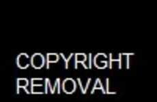 Provocative Flamingo Editorials