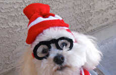 Disguising Doggy Costumes