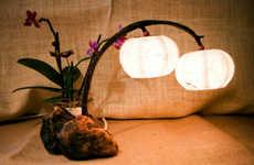 Planted Paper Lanterns