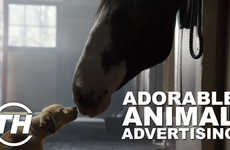 Adorable Animal Ads