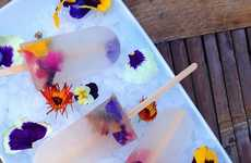 34 Refreshing Popsicle Recipes