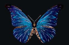 Crystallized Animal Photography