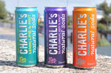 13 Examples of Healthy Carbonated Beverages