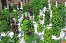 Vertical Aeroponic Gardens