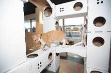 Pop-Up Kitty Playhouses