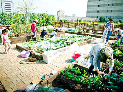55 Examples of Urban Garden Innovations