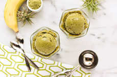18 Homemade Ice Cream Recipes