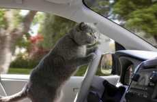Driver-Assistance Campaigns