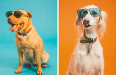 56 Pooch-Honoring Portraits