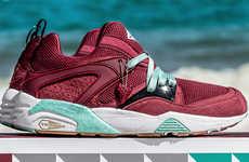 Shark-Inspired Sneakers