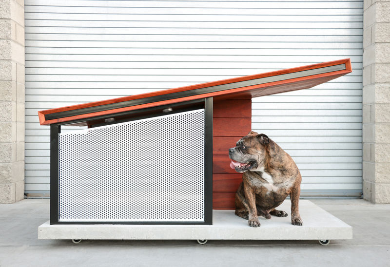 Ultra-Modern Dog Homes