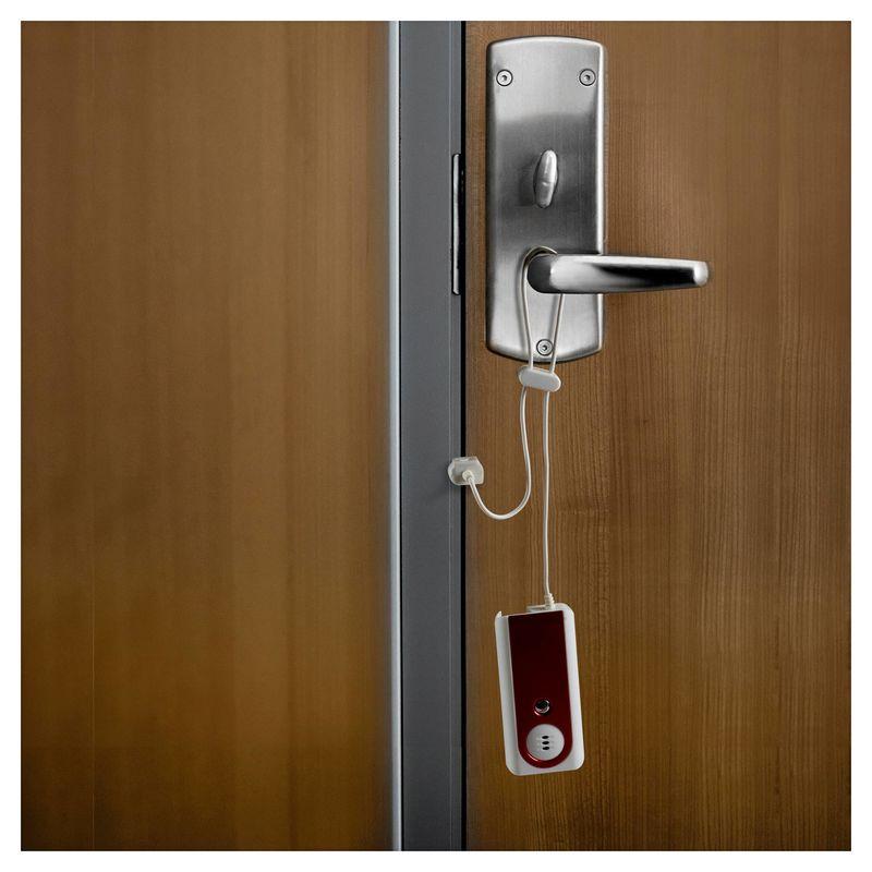 Travel Door Alarms