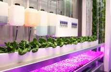 Crop-Growing Shipping Containers
