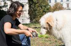 Pet-Friendly Water Dispensers