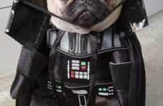 Hilarious Dog Costumes (UPDATE)