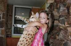 Supersized House Pets