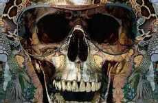 Skeletal Sunglasses