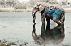 Graffitied Endangered Species