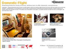 Private Jet Trend Report Research Insight 1