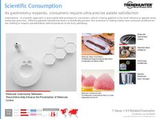 Gastronomy Trend Report Research Insight 4