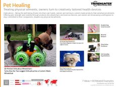 Pet Accessory Trend Report Research Insight 3