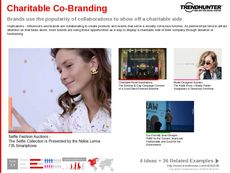 Brand Partnership Trend Report Research Insight 2