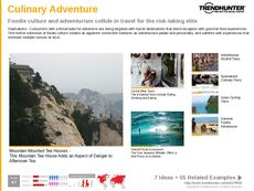 Tourist Destination Trend Report Research Insight 4