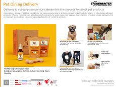 Pet Product Trend Report Research Insight 5