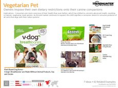 Pet Product Trend Report Research Insight 6