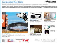 Pet Accessory Trend Report Research Insight 7