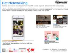 Messaging Platform Trend Report Research Insight 5