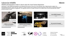 Art Photography Trend Report Research Insight 6