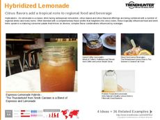 Mocktail Trend Report Research Insight 7
