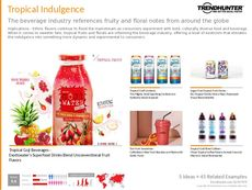 Fermented Beverage Trend Report Research Insight 6