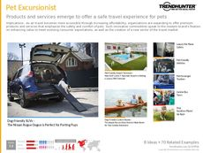 Travel Destination Trend Report Research Insight 6