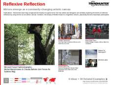 Mirror Trend Report Research Insight 3