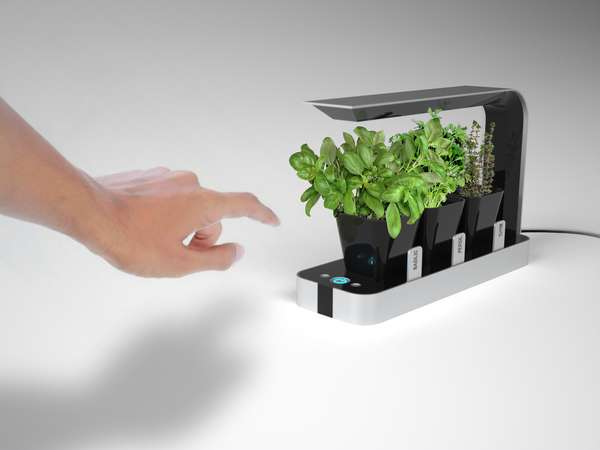 Urban Kitchen Herb Growers