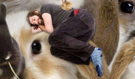 Pet Friendly Sleepwear